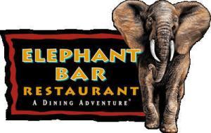 Academy of Scuba Elephant Bar Social